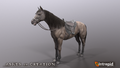HorseImage01.png